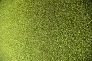 התקנת דשא סינטטי בשומרון
