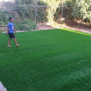 דשא סיננטי באיכות מעולה